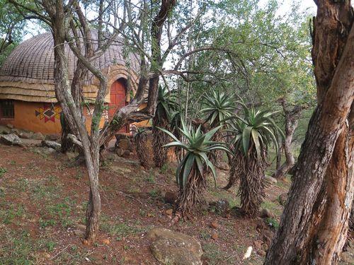Zulu hotel room at Shakaland